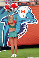 1999 Miami Dolphins vs. New England Patriots, November