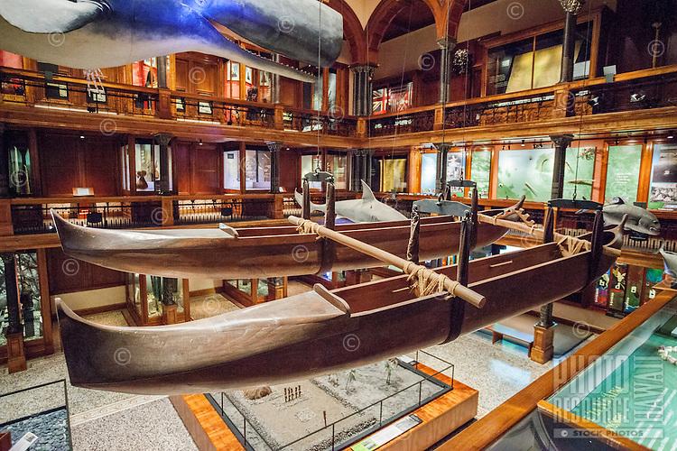 A double-hulled Hawaiian fishing canoe on display at the Bishop Museum, Honolulu, O'ahu.