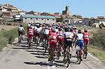 The peloton in action during Stage 17 of the La Vuelta 2018, running 186.1km from Ejea de los Caballeros to Lleida, Spain. 13th September 2018.                   <br /> Picture: Unipublic/Photogomezsport | Cyclefile<br /> <br /> <br /> All photos usage must carry mandatory copyright credit (&copy; Cyclefile | Unipublic/Photogomezsport)