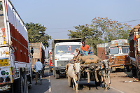 INDIA, Uttar Pradesh, Banda, heavy traffic with Tata trucks and bullock cart