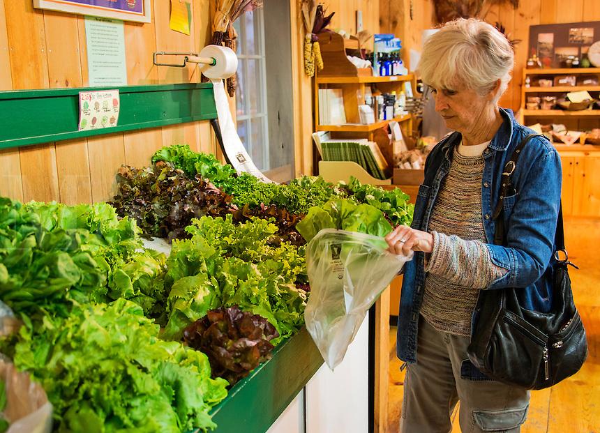Senior woman shopping for vegetables at a farm market.