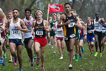 EVANSVILLE, IN - NOVEMBER 18: Runners keep with the pack during the Division II Men's Cross Country Championship held at the Angel Mounds on November 18, 2017 in Evansville, Indiana. (Photo by Tim Broekema/NCAA Photos/NCAA Photos via Getty Images)