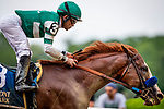 JUNE 06: Catalina Cruiser with Joel Rosario wins The True North Stakes  at Belmont Park in Elmont, New York on June 06, 2019. Evers/Eclipse Sportswire/CSM