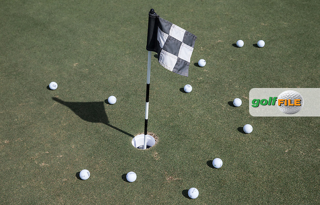 Practice putting area, The Track at The Meydan Golf Club, Dubai, United Arab Emirates.  31/01/2016. Picture: Golffile | David Lloyd<br /> <br /> All photos usage must carry mandatory copyright credit (&copy; Golffile | David Lloyd)