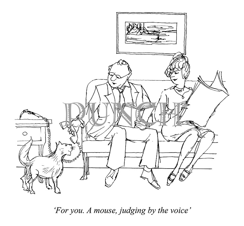 'For you. A mouse, judging by the voice'