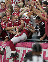 cards1011 166497 10/10/10- Arizona Cardinals fans celebrate with FS Kerry Rhodes after he recovered a fumble and ran it in for a touchdown against the New Orleans Saints in the fourth quarter of Sunday's home game. (Pat Shannahan/ The Arizona Republic)