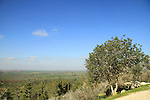 Israel, Masua forest in the Shephelah, a view from Mitzpe Masua observation tower in Park Britannia
