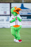 "Danville Braves mascot ""Blooper"" participates in a contest between innings of the game against the Princeton Rays at American Legion Post 325 Field on June 25, 2017 in Danville, Virginia.  The Braves walked-off the Rays 7-6 in 11 innings.  (Brian Westerholt/Four Seam Images)"