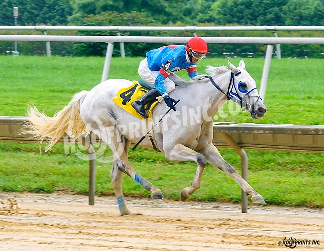 Hiram winning at Delaware Park on 7/13/16