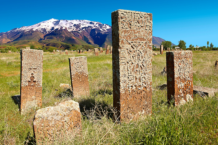 Seljuk headstones  with Arabic & Persian floral, geometric & calligraphic decorations in the Seljuk Cemetary at Ahlat, Lake Van, Turkey. Cenetary dates from eleventh to sixteenth century. 2