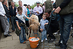 Gypsy annual Horse Fair. Wickham Hampshire UK. Goddard family opening the fair in the traditional manner. Pony drinks from a bucket of beer. Smaller of the two boys is Spock Goddard
