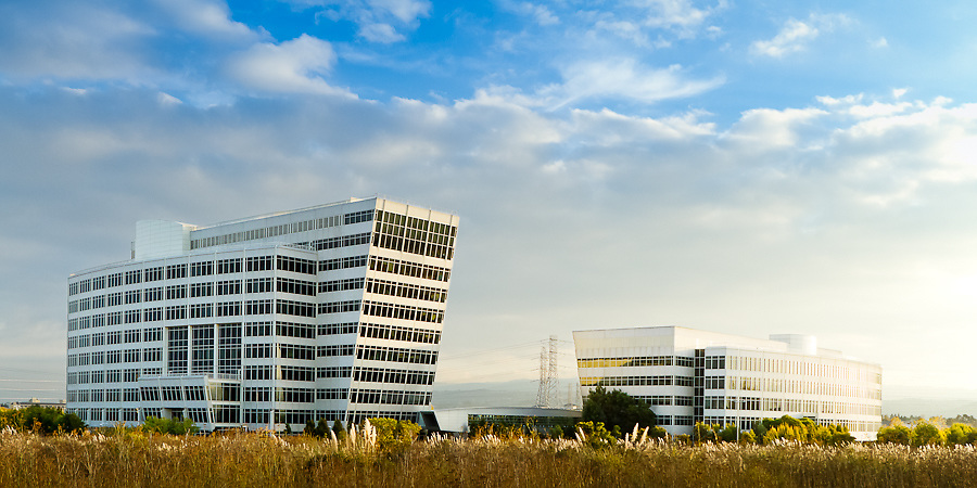 View of two corporate buildings in San Mateo from nearby water front park.