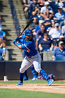 Toronto Blue Jays second baseman Devon Travis (29) at bat during a Grapefruit League Spring Training game against the New York Yankees on February 25, 2019 at George M. Steinbrenner Field in Tampa, Florida.  Yankees defeated the Blue Jays 3-0.  (Mike Janes/Four Seam Images)