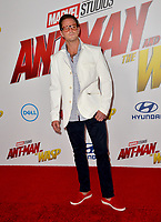 Cameron Douglas at the premiere for &quot;Ant-Man and the Wasp&quot; at the El Capitan Theatre, Los Angeles, USA 25 June 2018<br /> Picture: Paul Smith/Featureflash/SilverHub 0208 004 5359 sales@silverhubmedia.com