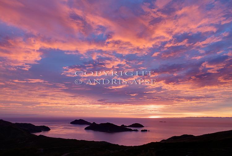 D'urville Island. New Zealand. Rangitoto Island. Pauagiangi Island. Tinui Islands at sunrise. Marlborough Region.