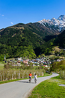 Italy, South Tyrol (Trentino - Alto Adige), Val Venosta, Tschengls (Italian: Cengles): village   Italien, Suedtirol (Trentino - Alto Adige), Vischgau, Tschengls: Dorf am Fusse der Tschenglser Hochwand (Nationalpark Stilfser Joch)