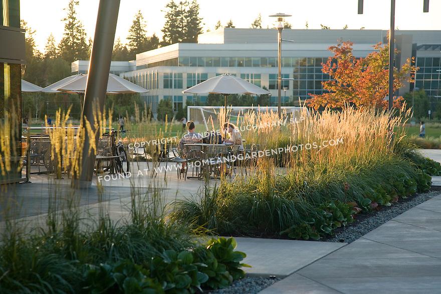 Microsoft West Campus; Sept., '09