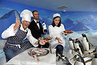 C...c..c...come dine with me in D...D...Dingle<br /> For one night only, the Penguins at the Dingle Aquarium, will play host to a pop-up restaurant as part of the forthcoming Dingle Peninsula Food &amp; Wine Festival which will take place over the weekend of the 30 September to the 2nd October 2011.  Local chefs, Kevin Murphy and Sinead Sheehy will be serving up a feast of local seafood to diners in the Penguin enclosure on the Saturday night of this gastro extravaganza which has become one of the key dates in the annual foodie calendar. The festival will also feature the 4th annual Blas na hEireann Awards where the judging of over 1,000 of the country's finest produce will culminate in a   sampling in Benner&rsquo;s Hotel. <br /> For further information click wwwdinglefood.com   <br /> Photo shows chef Kevin Murphy and Sinead Sheehy with waiter Lenoble Bourges feeding the penguins at Dingle Oceanworld on Tuesday at the festival launch.<br /> Picture by Don MacMonagle<br /> <br />   pr photo Blas na h-Eireann awards <br /> <br /> <br /> &copy; Photo by Don MacMonagle - macmonagle.com<br /> info@macmonagle.com