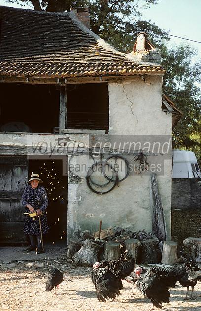 Europe/France/Midi-Pyrénées/46/Lot/Haut-Quercy/Env Saint-Martin-du-Bel-Air: Nourriture des dindes<br /> PHOTO D'ARCHIVES // ARCHIVAL IMAGES<br /> FRANCE 1990