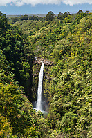 'Akaka Iki Falls, Big Island of Hawai'i