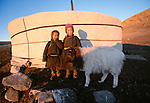 Nomad children standing with a sheep by a yurt, Mongolia