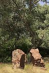 Israel, Tel Aviv. The Rocks garden in Hayarkon park