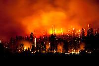 2009 Wildfire in Yosemite National Park