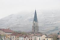 The roof tops and the church. The Hermitage vineyards on the hill behind the city Tain-l'Hermitage, on the steep sloping hill, stone terraced. Sometimes spelled Ermitage. Vineyards under snow in seasonably exceptional weather in April 2005. Tain l'Hermitage, Drome, Drôme, France, Europe