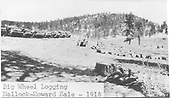 Loaded log cars at landing, set of big wheels, logs at landing.<br /> Hallack &amp; Howard Lumber Co.  Carson National Forest, NM  circa 1918