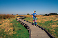 Woman walking on Boardwalk, and birdwatching / watching for Birds in Marsh, Boundary Bay Regional Park, Delta, BC, British Columbia, Canada (Model Released Person in foreground)