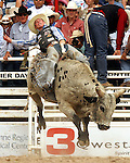 PRCA cowboy Steve Woolsey of Payson, Utah scored a crowd pleasing 91 point bull ride during the final round action at the 112th annual Cheyenne Frontier Days Rodeo in Cheyenne, Wyoming on July 27, 2008. Steve's aggregate score of 245 points on three head was enough to win the championship buckle.