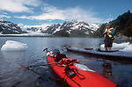 Alaska, Kenai Fjords National Park, Sea kayakers launch in Pederson Lagoon, Kenai Peninsula, bergy bits (small ice bergs), David Fox, model released,.