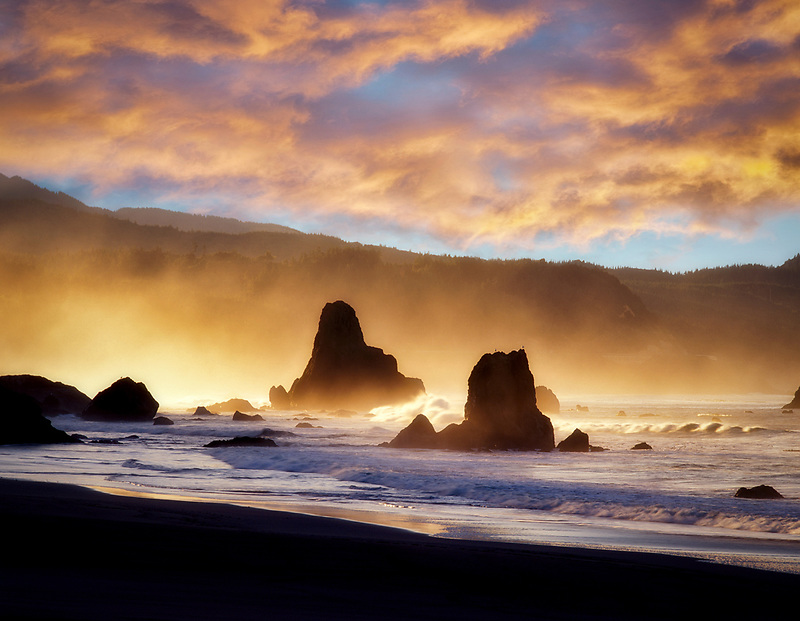 Morning fog at beach in Port Orgord, Oregon