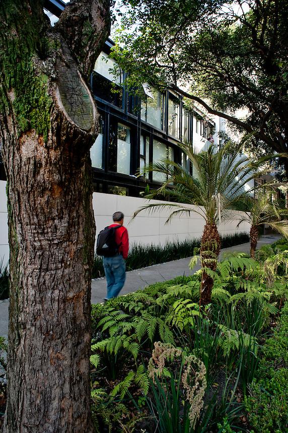 Calle Luis Urbina . Arkitektor, Edgar Compean architect, polanco, Mexico City