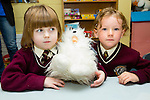 New arrival Seana McCarthy. and Kyra Prendergast settling into Junior Infants at Holy Family Primary School on Monday