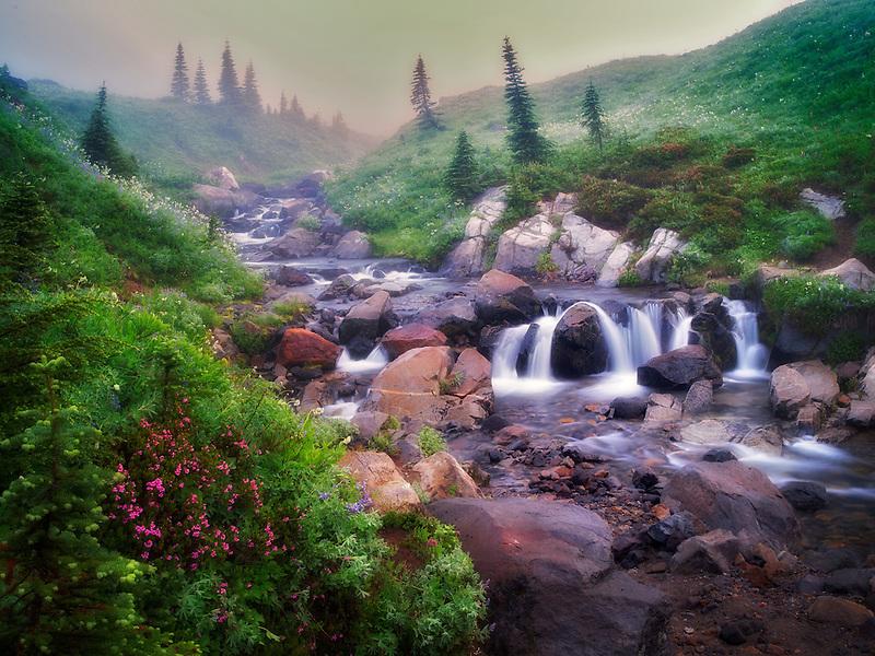 Edith Creek, wildflowers, waterfalls and fog. Mt. Rainier National Park, Washington