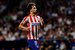 Joao Felix of Atletico de Madrid during UEFA Champions League match between Atletico de Madrid and Juventus at Wanda Metropolitano Stadium in Madrid, Spain. September 18, 2019. (ALTERPHOTOS/A. Perez Meca)