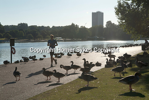 Serpentine Lake in Hyde Park London. Men exercising