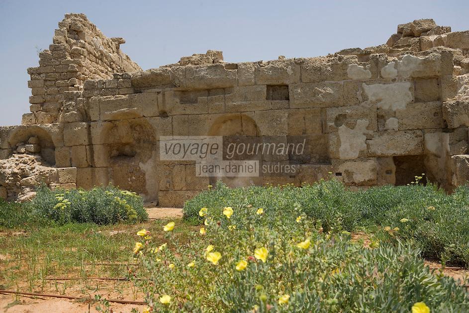 Asie/Israël/Galilée/Césarée: Ruines de Césarée - reste d 'une fontaine période romaine décorée avec des nymphes  //  Asia, Israel, Galilee, Caesarea Maritima: The ruins of Caesarea Maritima