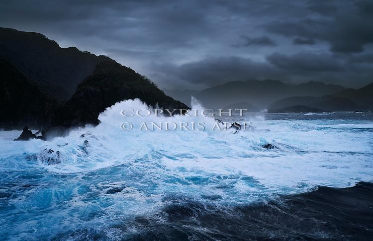 Breaksea Island. Fiordland National Park. New Zealand.