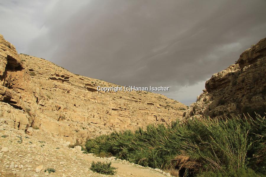 Judean desert, Ein Mabua (Ein Fawar) in Wadi Qelt