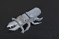 OrigamiUSA Convention 2015 Exhibition. OBC - Origami by Children - section. Stag Beetle designed and folded by Andrew Mao, 14, MD.