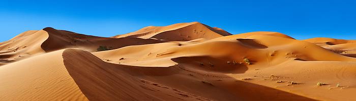 Sahara parabolic sand dunes of erg Chebbi, Morocco, Africa
