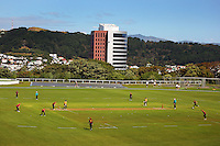 100104 Women's Cricket - Wellington Blaze v Northern Spirit