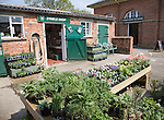 Stable shop and Coach House tea rooms with plant display at Helmingham Hall, Suffolk, England