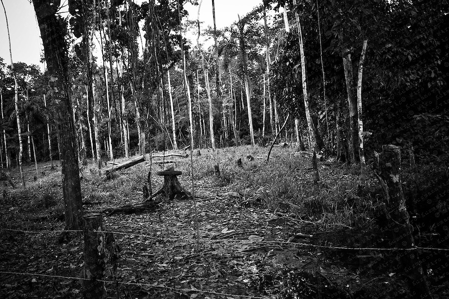 Former Texaco drilling site is seen in a forest near the town of Lago Agrio.More than 900 pits were simply abandoned. Filled with a sludge of crude and toxic chemicals that continue to leach into soil as well as groundwater relied upon by thousands of local residents for drinking and bathing.