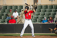 Louie Lechich (21) of the Kannapolis Intimidators at bat against the Hickory Crawdads at CMC-Northeast Stadium on May 21, 2015 in Kannapolis, North Carolina.  The Intimidators defeated the Crawdads 2-0 in game one of a double-header.  (Brian Westerholt/Four Seam Images)
