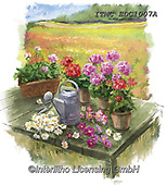 Marcello, FLOWERS, BLUMEN, FLORES, paintings+++++,ITMCEDC1007A,#f#, EVERYDAY