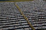STS; Southeast Transportation System; Southeast Toyota Vehicle Processing Center; Southeast Toyota Distributors; Westlake; JaxPort; Tallyrand; Jacksonville; Florida helicopter aerial