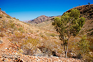 Image Ref: CA527<br />